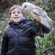Owl Encounter - Child